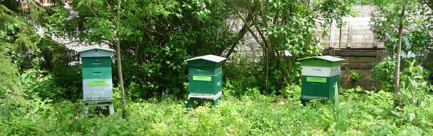 mai-2015-3-ruches