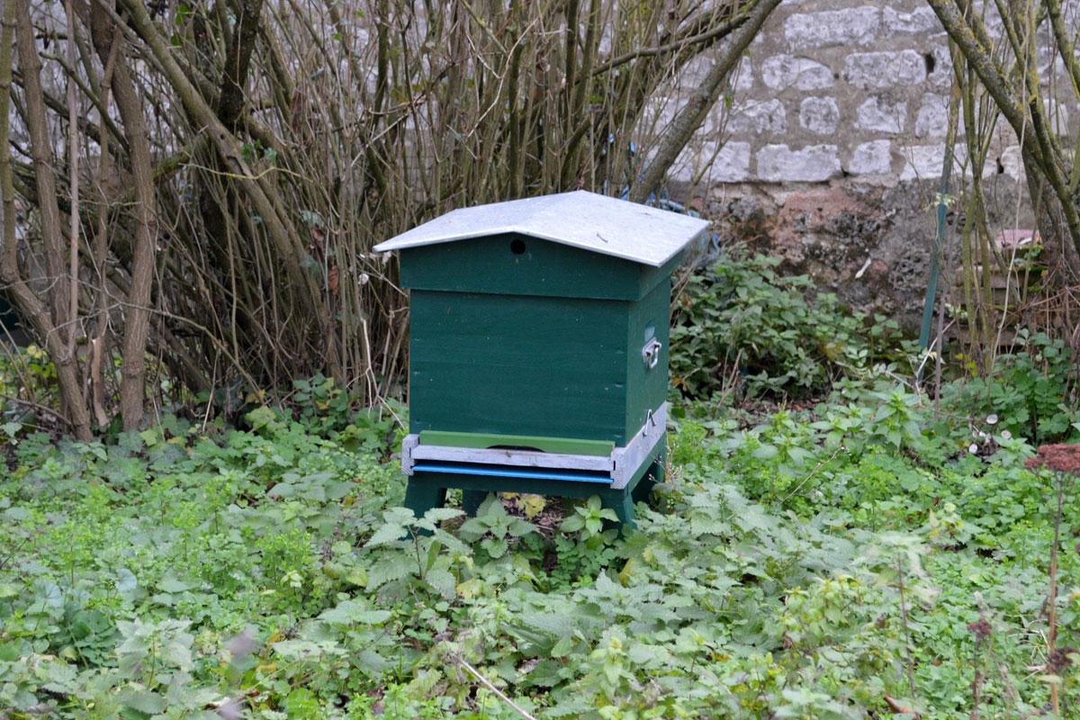 ruche-emmeline-dec-2015-1