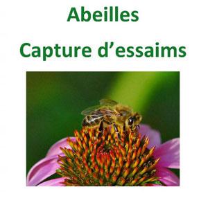 affiche_abeilles