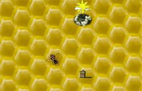 danse-abeilles