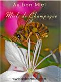 image-pour-catalogue-pdf