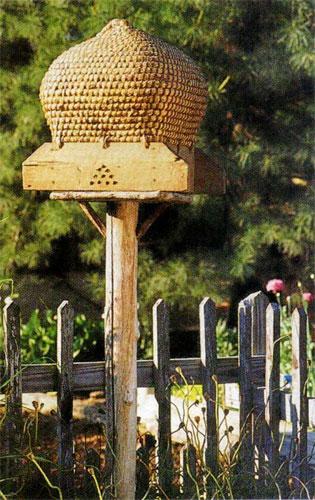 ruche-tressee-espagne